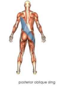 Ο πιο αποτελεσματικός τρόπος να χαλαρώσουμε την ένταση των μυών είναι μέσω της κίνησης και όχι με τις στατικές διατάσεις.