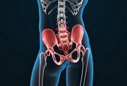 Πόνος στο Ισχίο –        Οστεΐτιδα της ηβικής σύμφυσης (Osteitis Pubis)