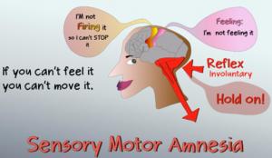 Αισθητηριακή κινητική αμνησία (Sensory Motor Amnesia) – Αιτία εμφάνισης πολλών χρόνιων πόνων